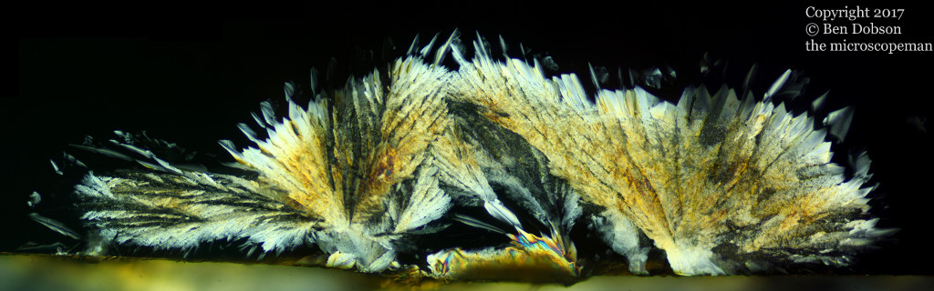 Crystaline Feathers Orange